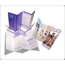 8.5 x 14 Brochure